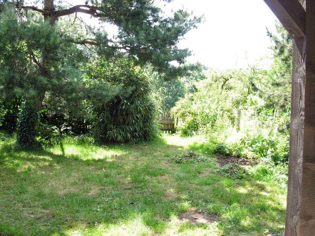 Kein Garten zu klein - vielfältig zu sein! Hotspot Kleingarten 22