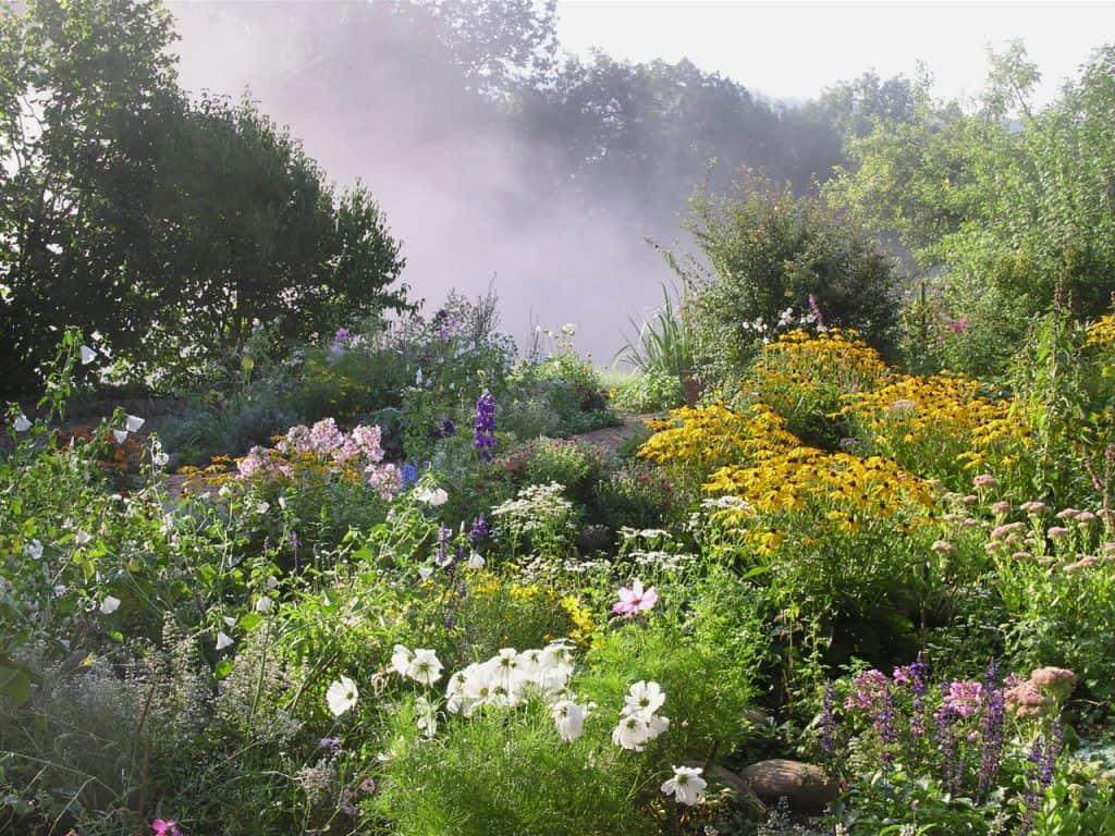 Kein Garten zu klein - vielfältig zu sein! Hotspot Kleingarten 34