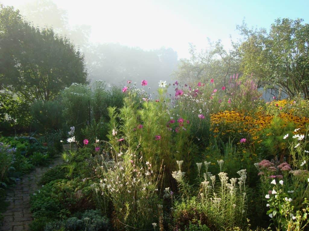Kein Garten zu klein - vielfältig zu sein! Hotspot Kleingarten 36
