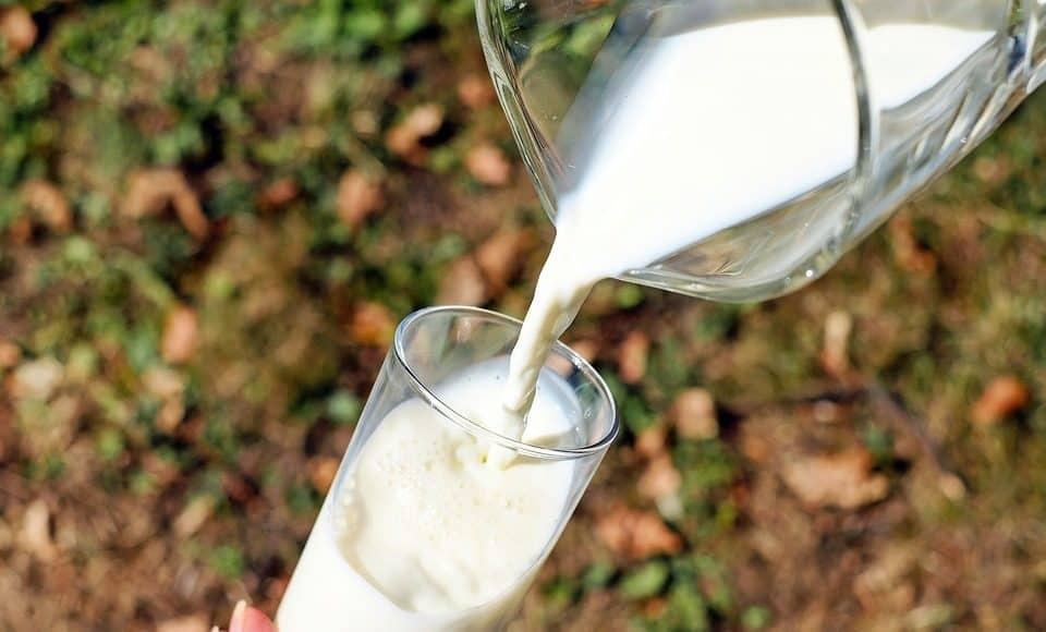 Milch eingiessen
