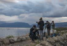 Ein Vierer Team auf der Suche nach möglichst vielen Vogelarten.