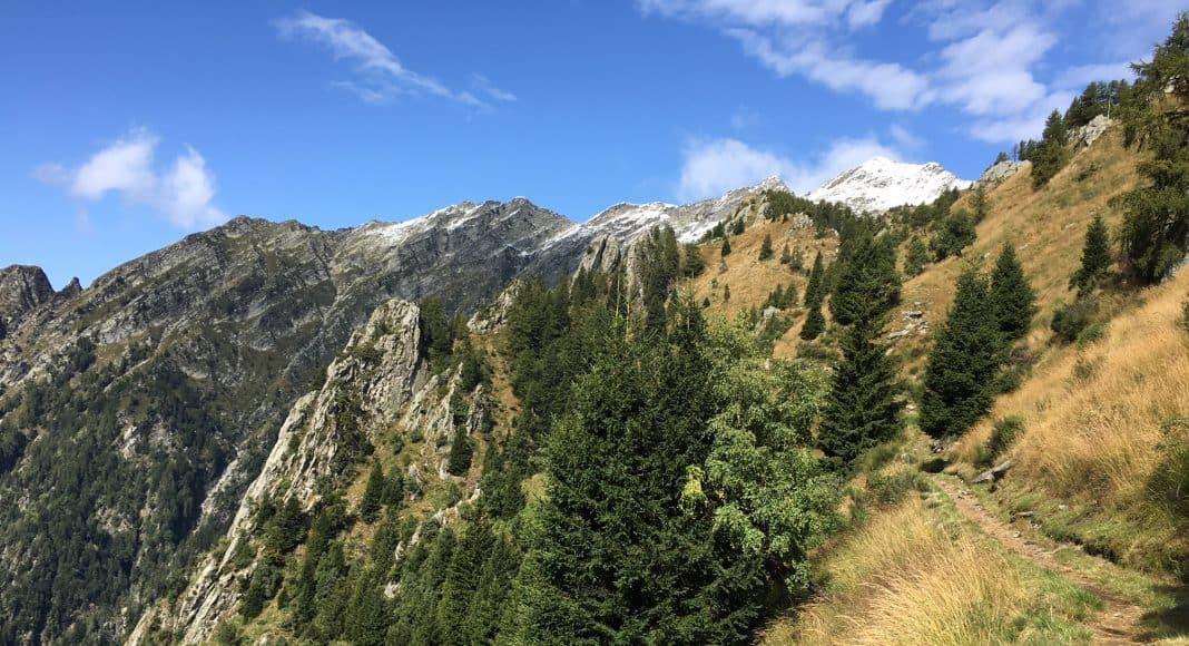 Bergwälder und Wiesenhänge