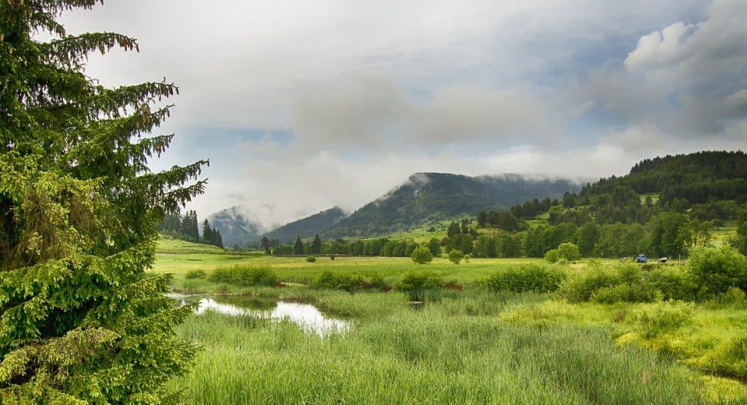 Feuchtgebiete gehören zu den prioritären Lebensräumen in der Schweiz.