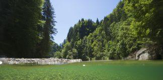 Intakte Gewässerlebensräume