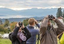 Am EuroBirdwatch vom 5./6. Oktober 2019 können an 63 Beobachtungsständen die Zugvögel live beobachtet werden.
