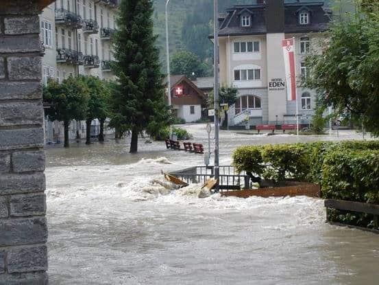 Kehrt der Wiedehopf in die Nordwestschweiz zurück? 2