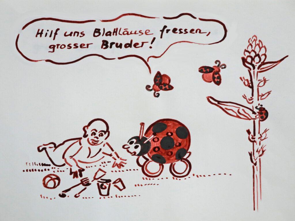 Zeichnung Marienkaefer Blattlaus