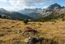 Blick auf Buffalora im Schweizerischen Nationalpark