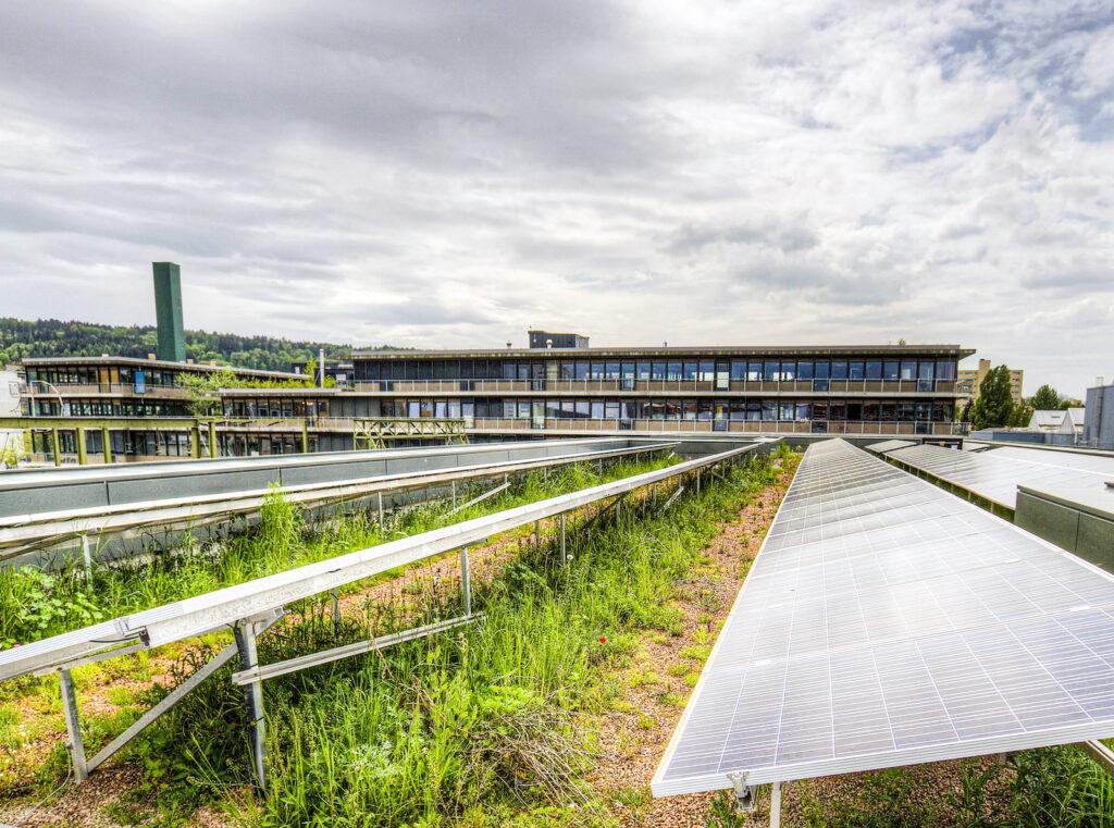 Kombination Solaranlagen und Dachbegruenung
