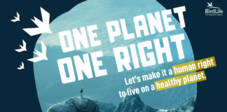 Logo BirdLife Petition One Planet One Right