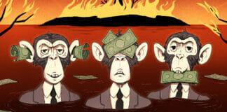 Drei Affen mit Geld