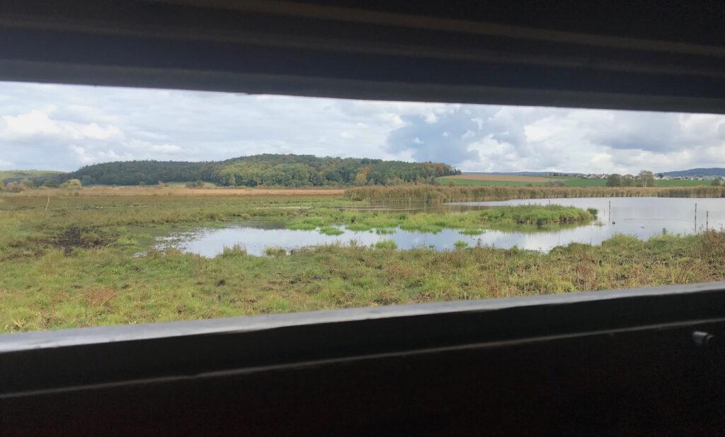 Ausblick auf das Neeracherried durch das Fenster einer Beobachtungshütte