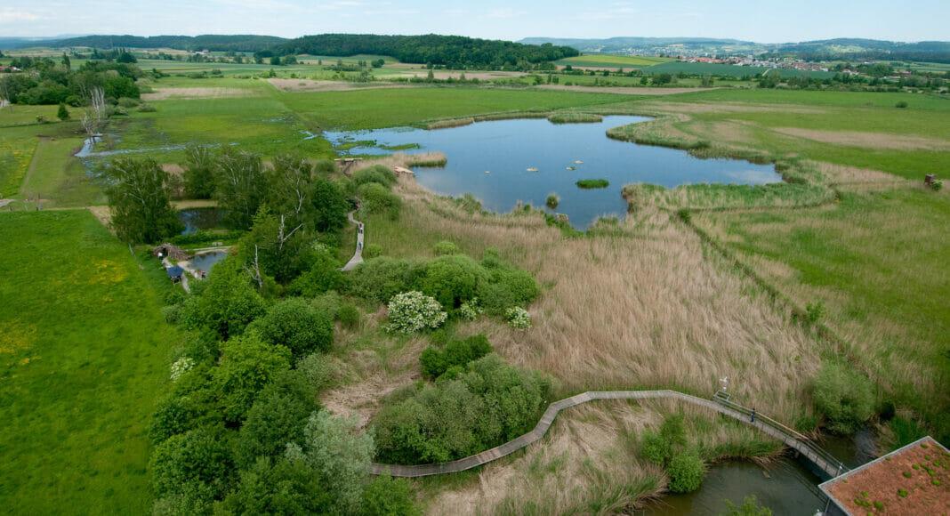 Luftbild des Neeracherrieds