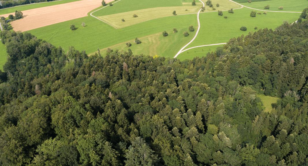Interaktives Schutzgebiet Burstel