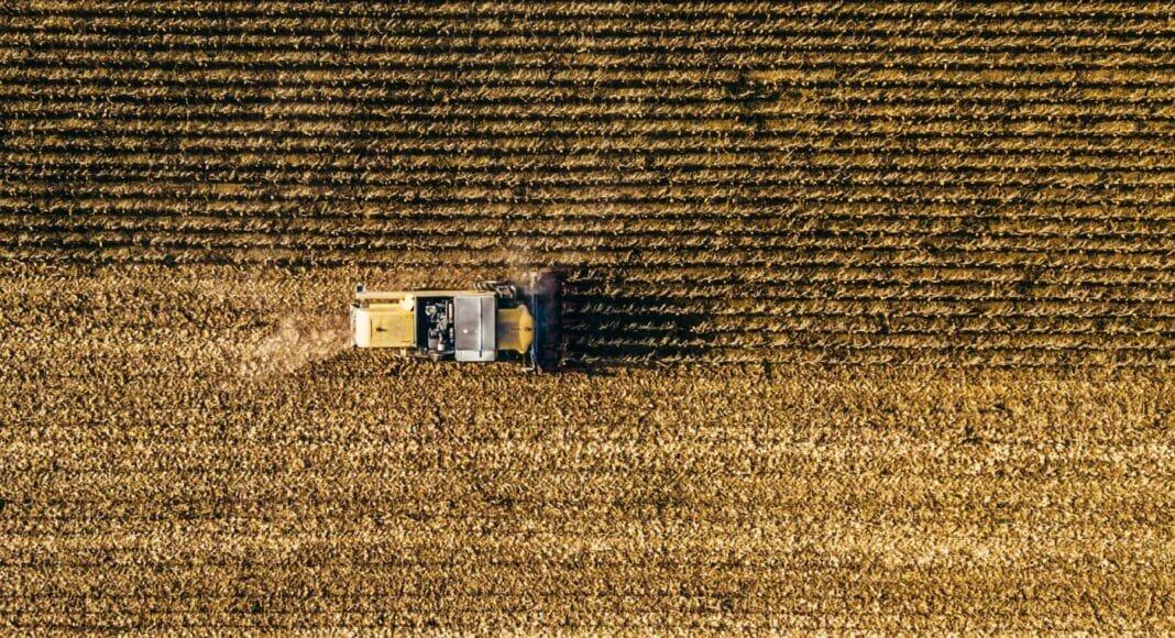 Sojabohnen-Ernte