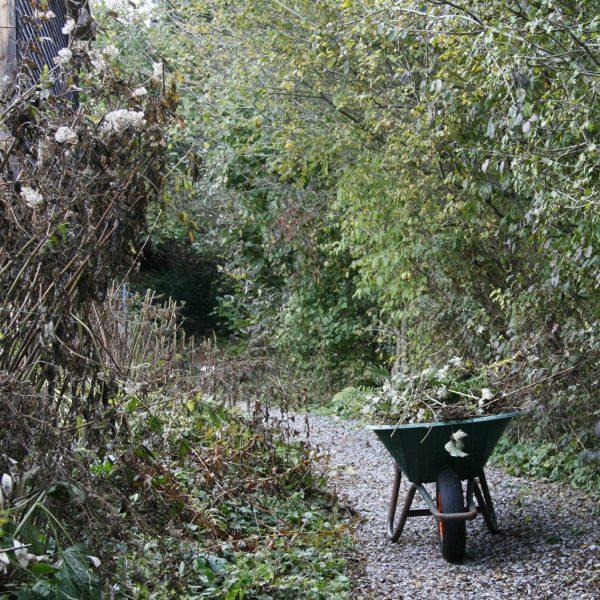 Ein herbslicher, naturnaher Garten.