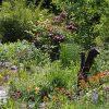 Blog-Garten1