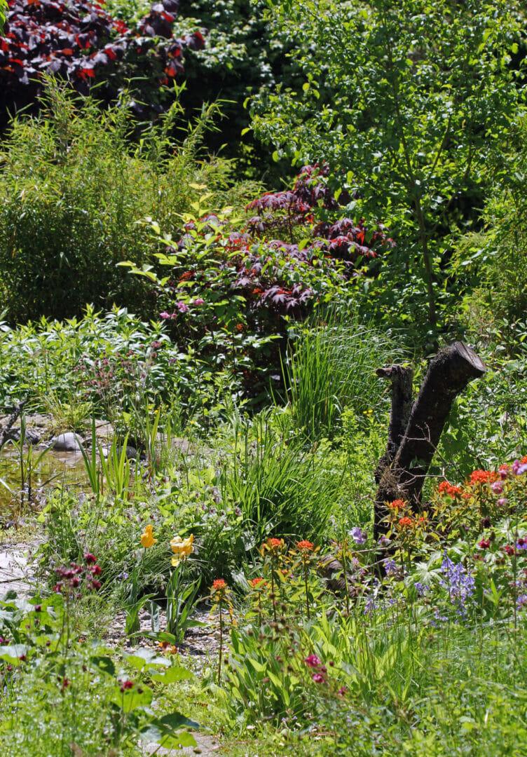 Ein naturnaher Garten.