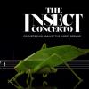 Den Insekten droht das Aussterben – eine schlimme Aussicht auch für uns Menschen. Das «Insect Concerto» will auf das Problem aufmerksam machen. © WWF Deutschland