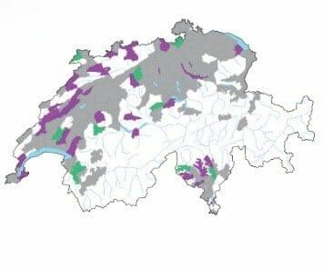 Das Sumpf-Helmkraut Scutellaria galericulata L. Verbreitungskarte