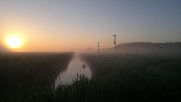 Die Versuchsfelder im Naturpark Westhavelland in Brandenburg. Hier testen IGB-WissenschaftlerInnen die ökologischen Auswirkungen von Strassenbeleuchtungen. © Stefan Heller / IGB