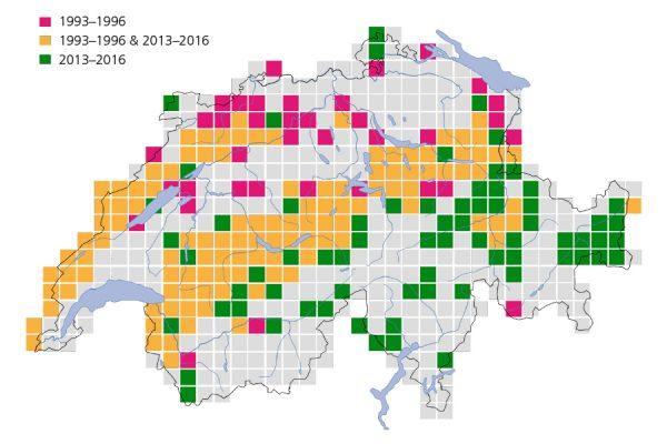Verbreitungskarte der Waldschnepfe in der Schweiz, basierend auf den Daten für den Brutvogelatlas 2013–2016. © Vogelwarte