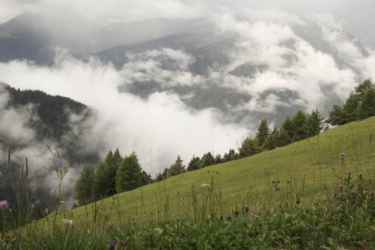Bergwiese mit Nebel in den Tälern.