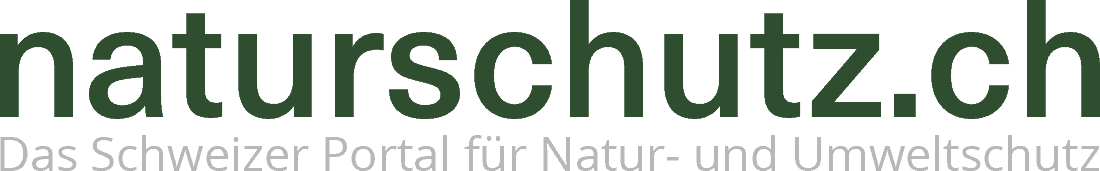 Schweizer Grossbanken treiben Klimawandel an 5