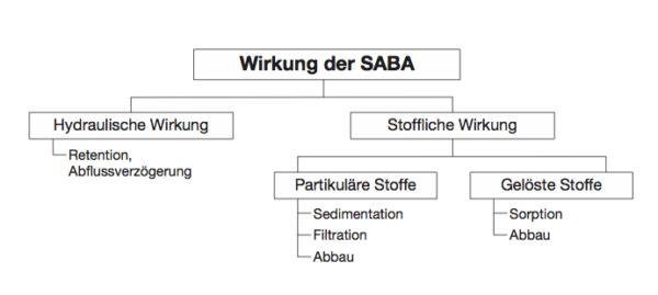 Die Reinigungsleistung einer SABA beruht auf ganz verschiedenen Prozessen. | © Nach Grotehusmann